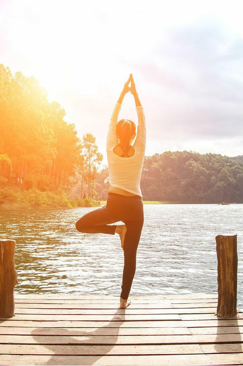 Conquering the Causes of Chronic Illness for a Healthier Life