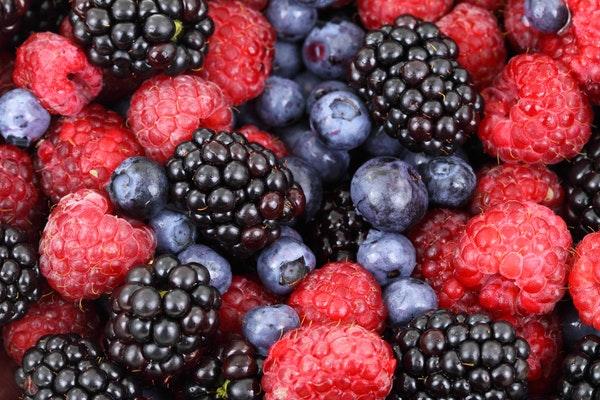 food-forest-blueberries-raspberries-87818