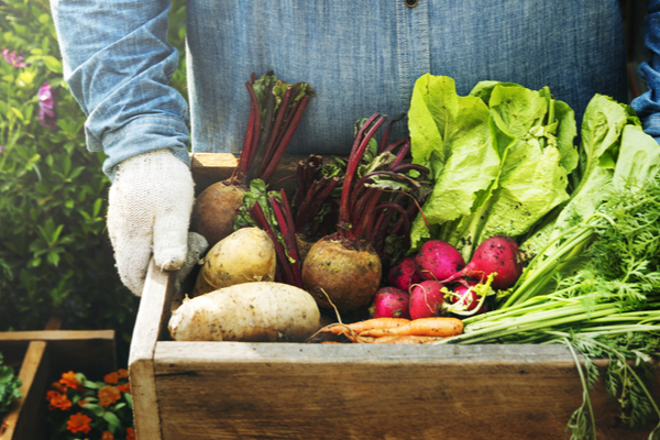 The Science and Benefits of Consuming Locally Seasonal Produce